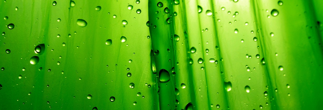 Green Abstract Wallpaper Hd Background Wallpaper 23 HD Wallpapers