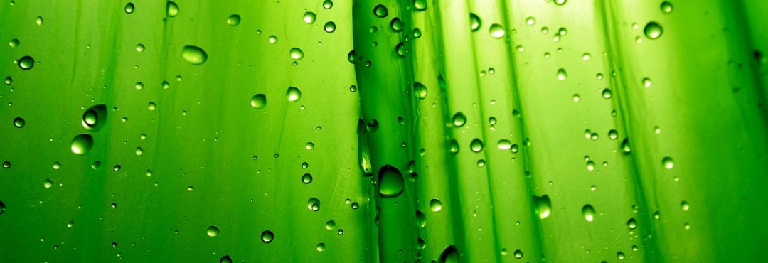 Green Abstract Wallpaper Hd Background Wallpaper 23 HD Wallpapers
